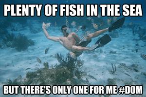 Genoeg vis in de zee