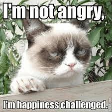 niet boos