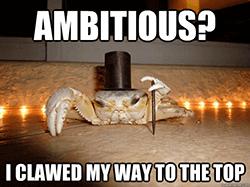 ambitieus