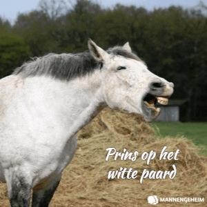 Is dit jouw prins op het witte paard