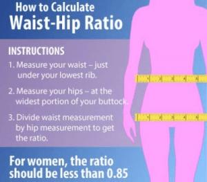 Taille - heup verhouding - juiste gewicht