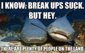 break-ups-suck-shark-meme