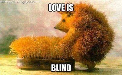 Men zegt vaak dat liefde blind is als de persoon niet aantrekkelijk is